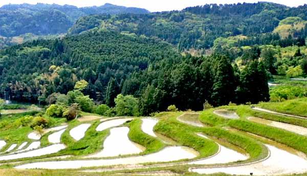 レポート なぜ〝山の中〟に〝用水路〟は作られたか? ─房総丘陵の水利用